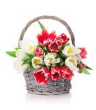 Красочный букет тюльпанов Стоковые Фотографии RF