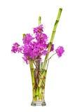 Красочный букет цветка от фиолетовых цветков рододендрона стоковая фотография