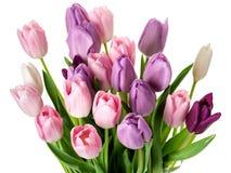 Красочный букет цветков тюльпанов Стоковое Изображение RF