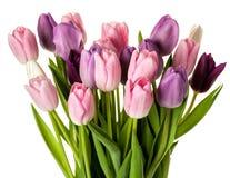 Красочный букет цветков тюльпанов Стоковые Изображения