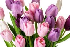 Красочный букет цветков тюльпанов Стоковая Фотография RF