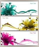 Красочный вектор лилии Стоковое Фото