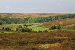 Красочный взгляд северного Йоркшира в лете Стоковое Изображение RF
