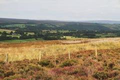 Красочный взгляд северного Йоркшира в лете Стоковое фото RF