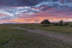 Красочный восход солнца над равнинами Mara Masai, Кения стоковая фотография rf
