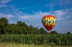 Красочный горячий воздушный шар над кукурузным полем на солнечный день с деревьями и пасмурным голубым небом Стоковое Изображение RF