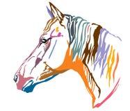 Красочный декоративный портрет иллюстрации вектора horse-2 Стоковое Фото