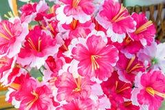 Красочный лепестков цветка Стоковая Фотография RF
