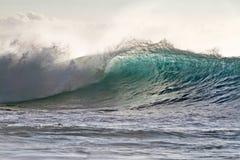 Красочный занимаясь серфингом Lit волны с солнечным светом в Тихом океане Стоковое фото RF