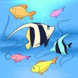 Красочный заплыв рыб в морской воде иллюстрация вектора