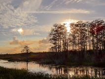 красочный заход солнца падения в болотах болот стоковые изображения rf