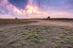 Красочный заход солнца на ландшафте вересковой пустоши Стоковые Изображения RF