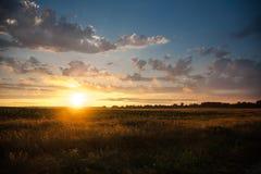 Красочный заход солнца на предпосылке облачного неба в поле, na лета Стоковое Изображение RF