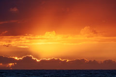 Красочный заход солнца на Nr Vorupoer на побережье Северного моря в Дании Стоковые Изображения RF
