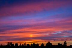 Красочный заход солнца с облаками и деревьями Стоковые Изображения