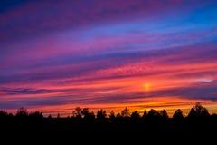 Красочный заход солнца с облаками и деревьями Стоковая Фотография