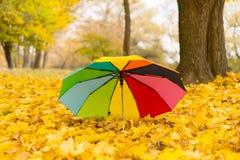 Красочный зонтик лежа на желтых листьях Стоковые Изображения RF