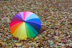 Красочный зонтик лежа на желтых листьях Стоковые Фото