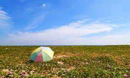 Красочный зонтик на пляже в сезоне лета Стоковое Фото