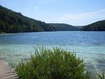 Красочный и живой ландшафт берега озера Спокойный ландшафт полезный как предпосылка Понизьте каньон озер Озера Plitvice националь Стоковое Изображение RF