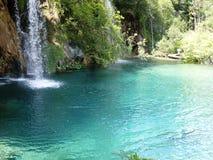 Красочный и живой ландшафт берега озера Спокойный ландшафт полезный как предпосылка Понизьте каньон озер Озера Plitvice националь Стоковая Фотография