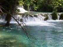 Красочный и живой ландшафт берега озера Спокойный ландшафт полезный как предпосылка Понизьте каньон озер Озера Plitvice националь Стоковые Изображения