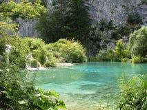 Красочный и живой ландшафт берега озера Спокойный ландшафт полезный как предпосылка Понизьте каньон озер Озера Plitvice националь Стоковые Фотографии RF