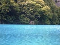 Красочный и живой ландшафт берега озера Спокойный ландшафт полезный как предпосылка Понизьте каньон озер Озера Plitvice националь Стоковое Фото