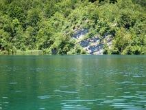 Красочный и живой ландшафт берега озера Спокойный ландшафт полезный как предпосылка Понизьте каньон озер Озера Plitvice националь Стоковое Изображение