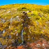 Красочный и красивый малый исландский водопад, Исландия Стоковая Фотография RF