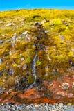 Красочный и красивый малый исландский водопад, Исландия Стоковое фото RF