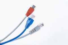 Красочный кабель сети с соединителями RJ45 Стоковая Фотография RF