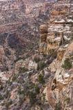 Красочный каньон осла Стоковая Фотография RF