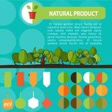 Красочный комплект ярлыков натурального продучта био зеленый Стоковое Изображение