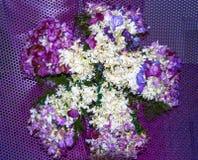 Красочный красивый цветок букета стоковая фотография