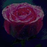 Красочный метод стежком креста розы Искусство дизайна вышивки иллюстрация вектора
