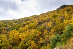 Красочный наклон горы ¼ Œ Пекина Baihua Mountainï Стоковые Изображения