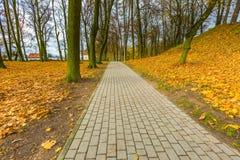 Красочный парк падения в малом городе в Польше Стоковые Изображения