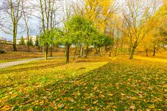 Красочный парк падения в малом городе в Польше Стоковая Фотография RF