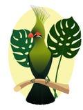 Красочный попугай на ветви, бортовой профиль экзотическая фауна Стоковое Изображение RF
