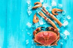 Красочный продукт моря на деревянном голубом backgound Стоковое фото RF