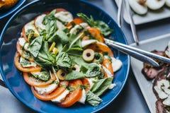 Красочный салат Mocarella и томатов Стоковая Фотография