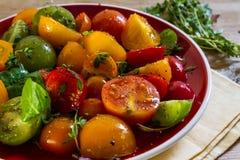 Красочный салат томата Стоковое Изображение