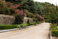 Красочный сад лета стоковое фото rf