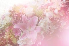 Красочный сладостный букет цветка изолированный на предпосылке closeup Стоковые Фотографии RF