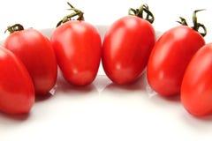 Красочный томат Стоковая Фотография RF