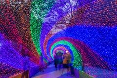 Красочный тоннель освещая на всю жизнь в ноче Стоковая Фотография RF