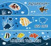 Красочный тропический вектор рогулек шаблонов знамен рыб Стоковое Изображение