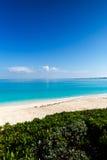 Красочный тропический взгляд рая Стоковое Фото
