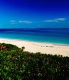 Красочный тропический взгляд рая Стоковые Изображения